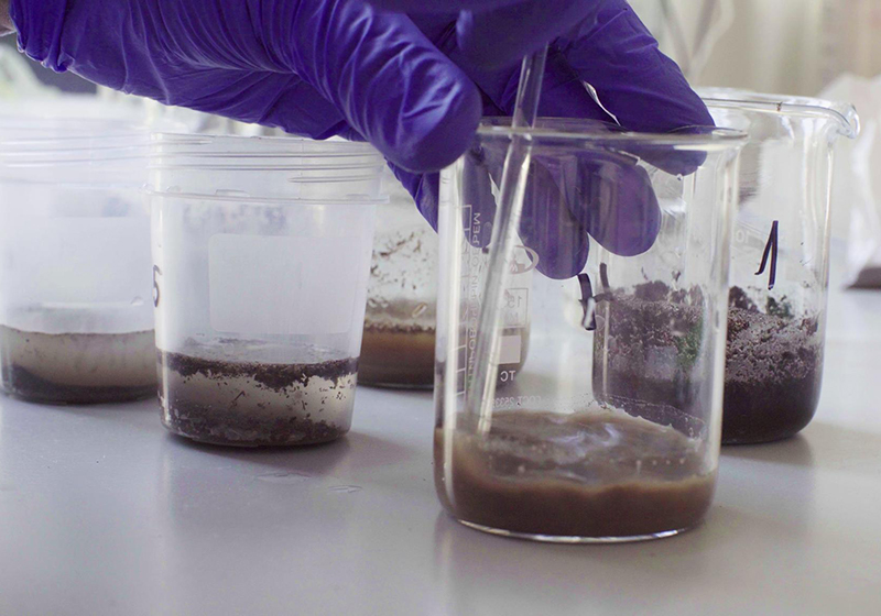 Analyzing difficult matrices, like soils and sludges often requires method modifications.
